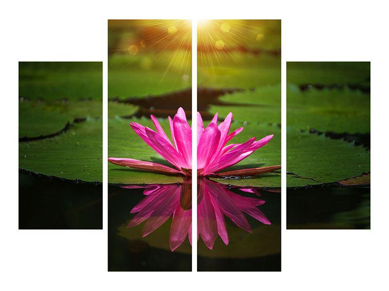 Acrylglasbild 4-teilig Lilienspiegelung
