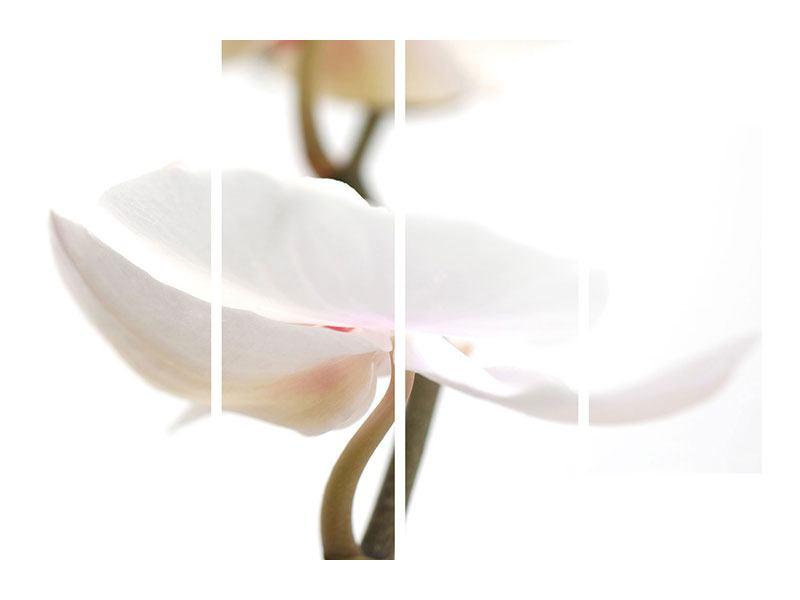 Acrylglasbild 4-teilig XXL Orchideenblüte