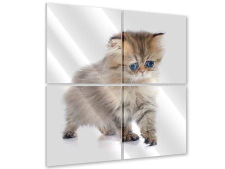 Acrylglasbild 4-teilig Perserbaby