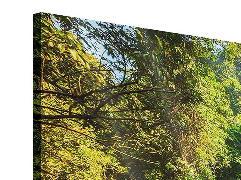 Acrylglasbild 4-teilig Das Gewässer