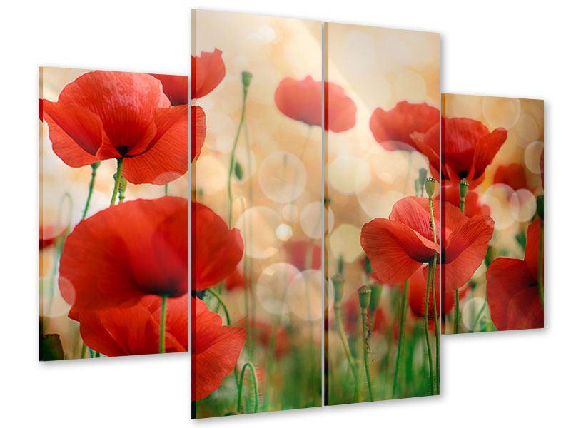 Acrylglasbild 4-teilig Der Klatschmohn