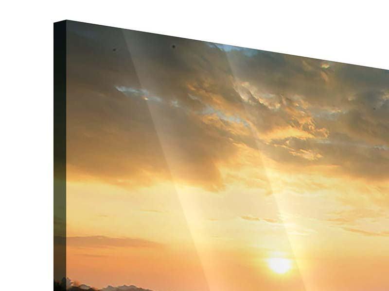 Acrylglasbild 4-teilig Sonnenblumenfeld im Abendrot
