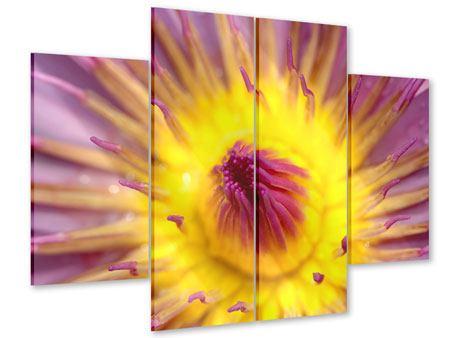 Acrylglasbild 4-teilig XXL-Lotus