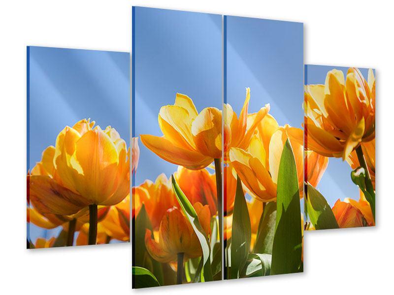 Acrylglasbild 4-teilig Märchenhafte Tulpen