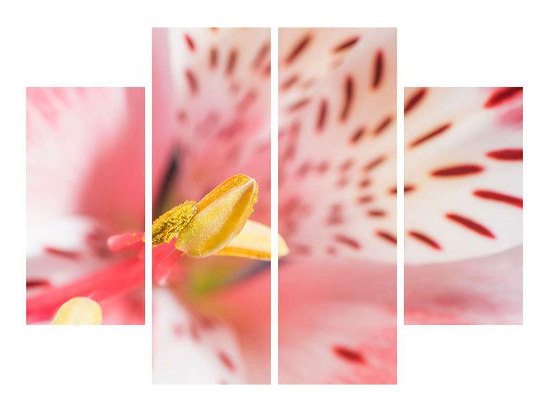 Acrylglasbild 4-teilig Der Lilienstempel