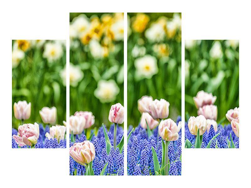 Acrylglasbild 4-teilig Ein Garten mit Tulpen