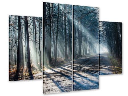 Acrylglasbild 4-teilig Wald im Lichtstrahl