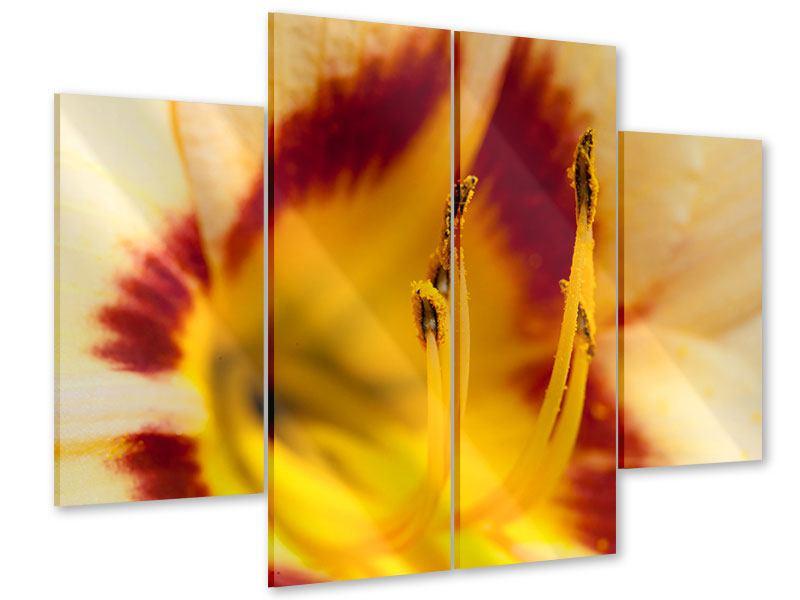 Acrylglasbild 4-teilig Riesenlilie