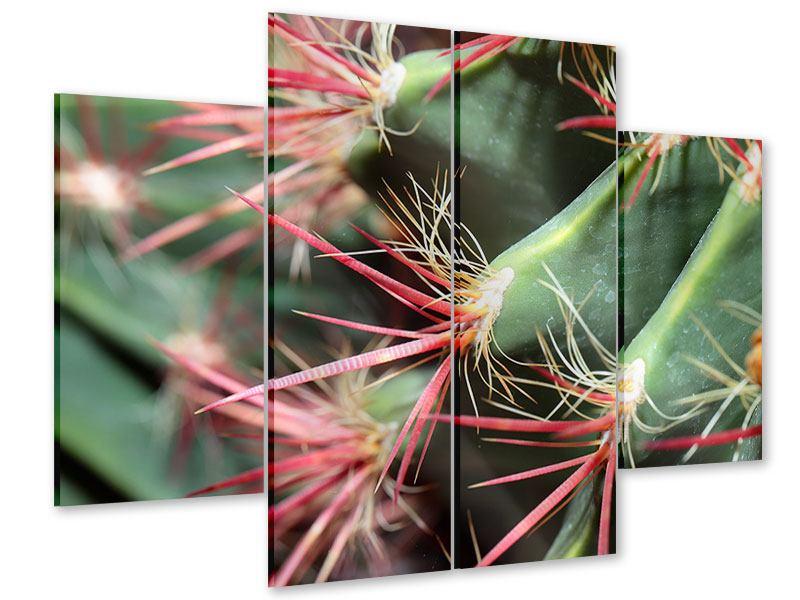 Acrylglasbild 4-teilig Die Kaktusblüte