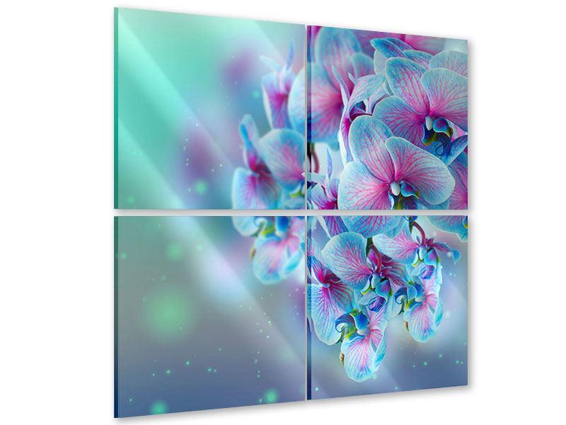 Acrylglasbild 4-teilig Farbige Orchideen
