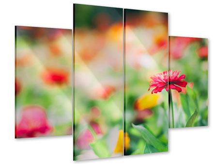 Acrylglasbild 4-teilig Im Blumengarten