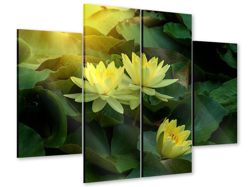 Acrylglasbild 4-teilig Wilde Lotus
