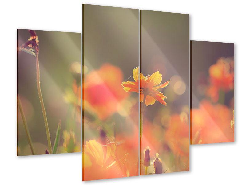 Acrylglasbild 4-teilig Blütenpracht