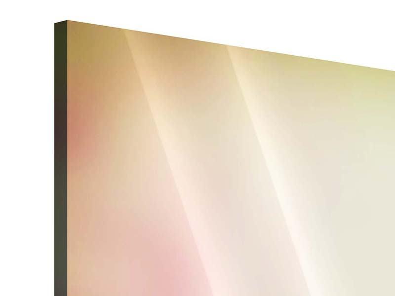 Acrylglasbild 4-teilig Colored Lilien