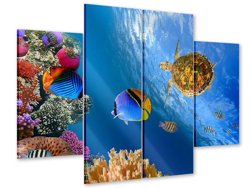 Acrylglasbild 4-teilig Fisch im Wasser