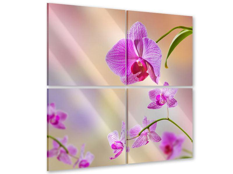 Acrylglasbild 4-teilig Romantische Orchideen