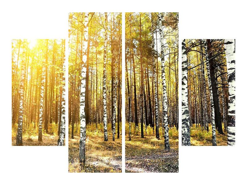 Acrylglasbild 4-teilig Birkenwald