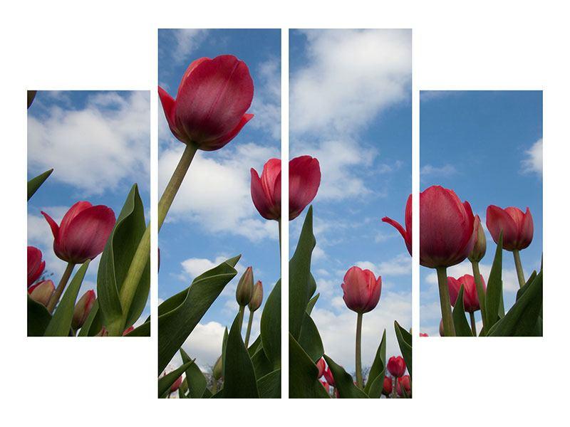 Acrylglasbild 4-teilig Tulpen im Himmel