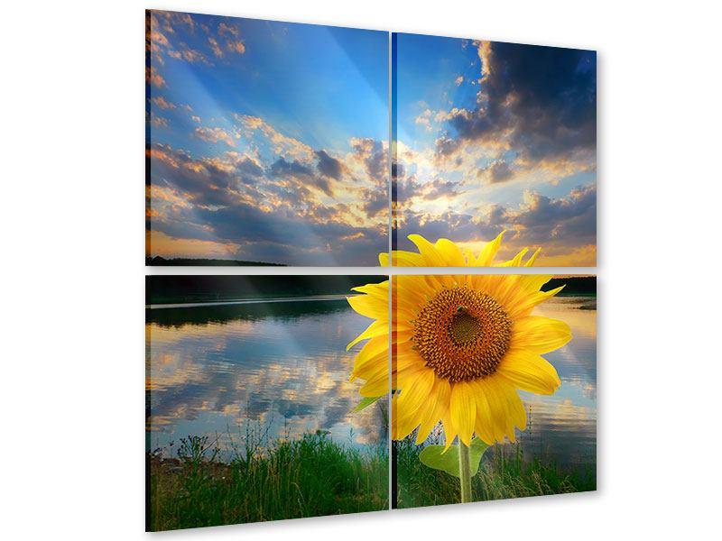 Acrylglasbild 4-teilig Sonnenblume am See
