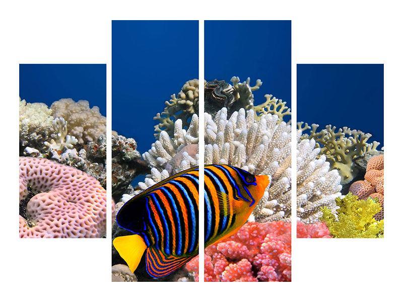 Acrylglasbild 4-teilig Mit den Fischen tauchen