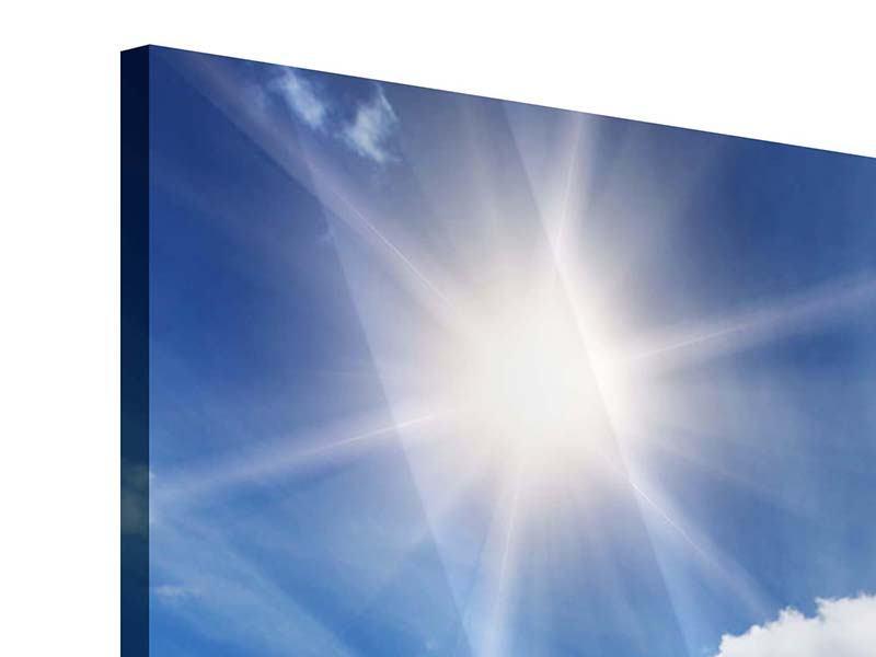Acrylglasbild 4-teilig Frühlingsgras