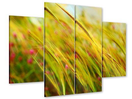 Acrylglasbild 4-teilig Das Weizenfeld