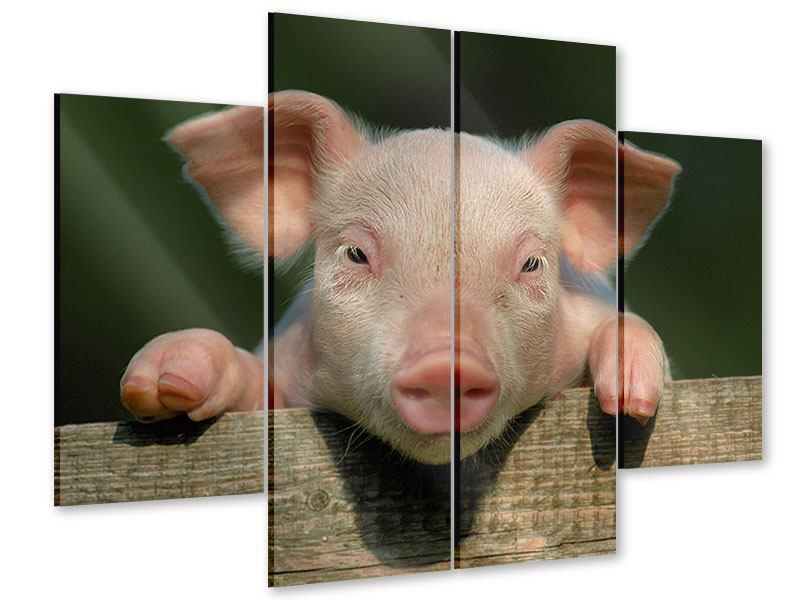 Acrylglasbild 4-teilig Schweinchen Namens Babe