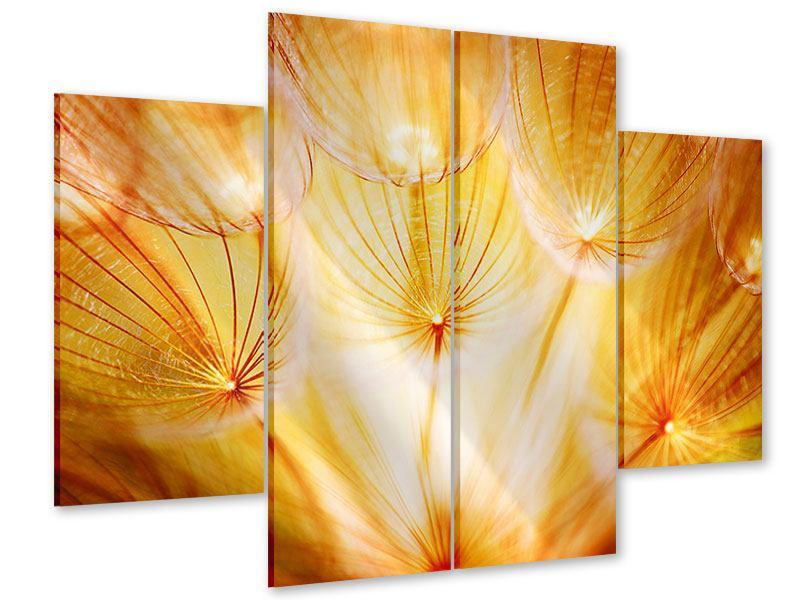 Acrylglasbild 4-teilig Close Up Pusteblume im Licht