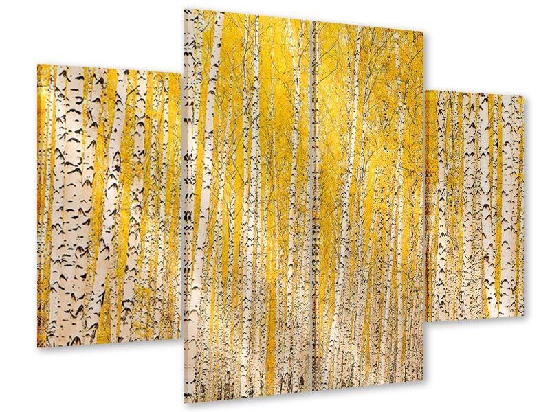 Acrylglasbild 4-teilig Der Birkenwald im Herbst