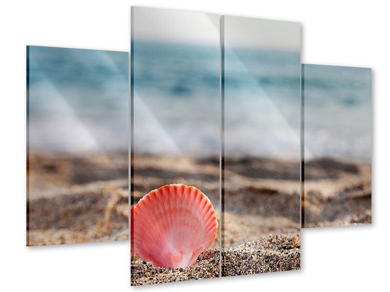 Acrylglasbild 4-teilig Die Muschel