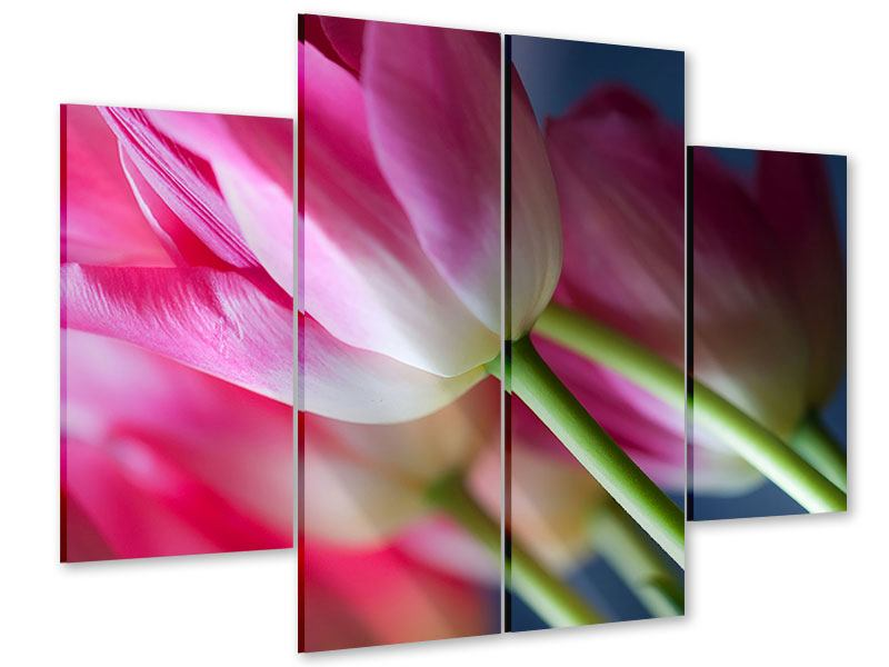 Acrylglasbild 4-teilig Makro Tulpen