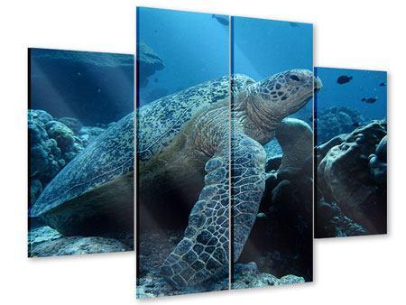 Acrylglasbild 4-teilig Die Meeresschildkröte