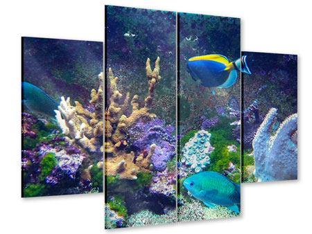 Acrylglasbild 4-teilig Fische