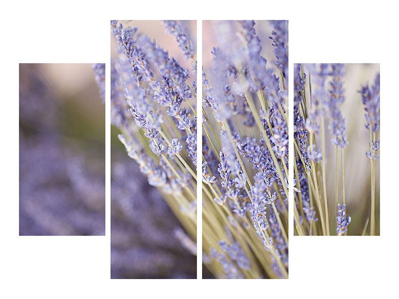 Acrylglasbild 4-teilig Lavendel XXL