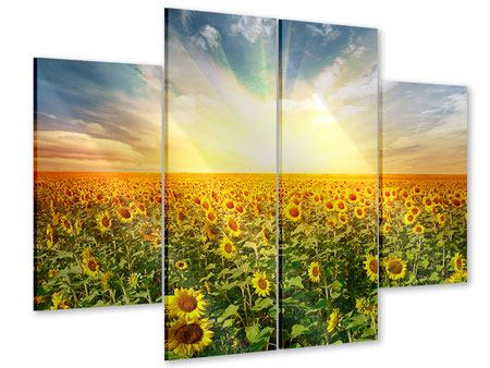 Acrylglasbild 4-teilig Ein Feld voller Sonnenblumen