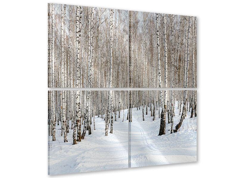 Acrylglasbild 4-teilig Birkenwald-Spuren im Schnee
