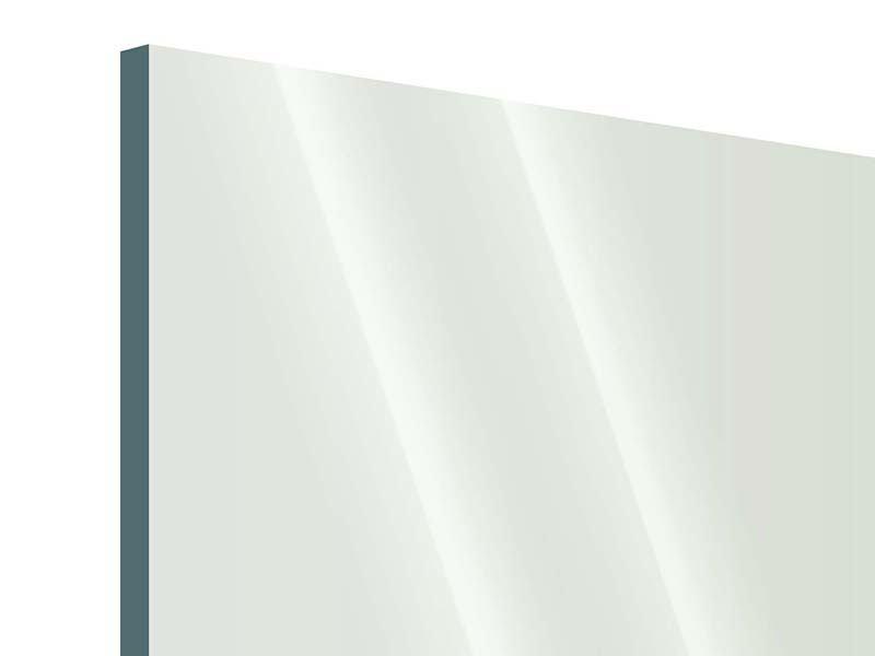 Acrylglasbild 4-teilig Bambuswall