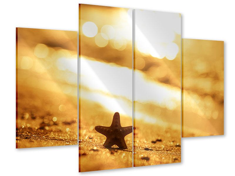 Acrylglasbild 4-teilig Der Seestern