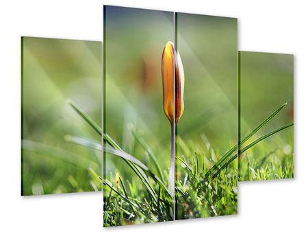 Acrylglasbild 4-teilig Die Blütenknospe