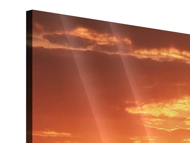 Acrylglasbild 4-teilig Sonnenuntergang in der Savanne