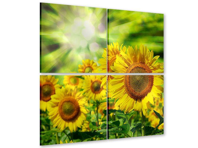 Acrylglasbild 4-teilig Die Sonne und die Blumen