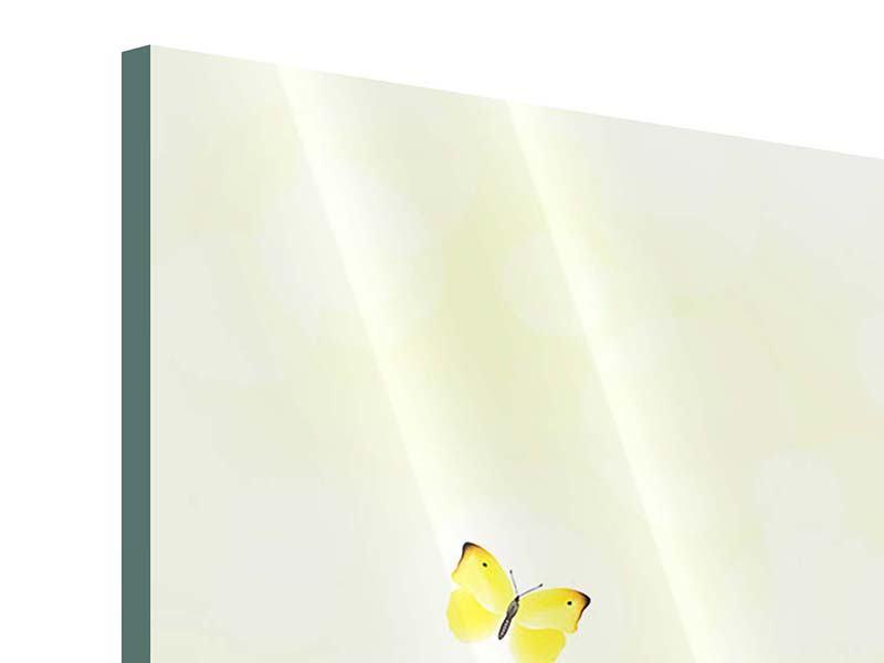 Acrylglasbild 4-teilig Lustige Schmetterlinge