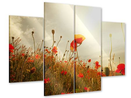 Acrylglasbild 4-teilig Das Mohnfeld bei Sonnenaufgang