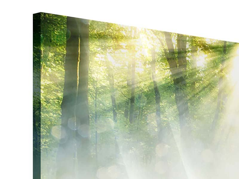 Acrylglasbild 4-teilig Zauberwald
