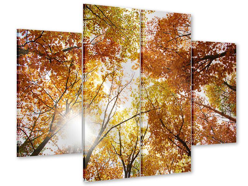 Acrylglasbild 4-teilig Herbstbäume