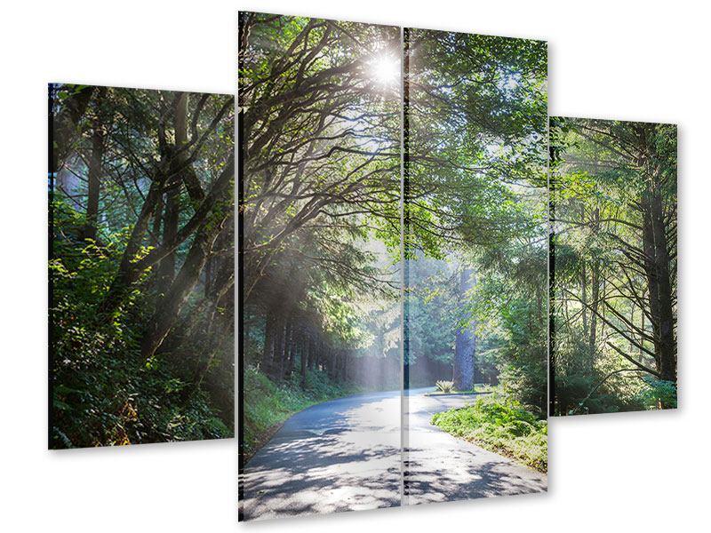 Acrylglasbild 4-teilig Sonniger Waldweg