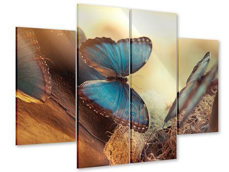 Acrylglasbild 4-teilig Schmetterlinge