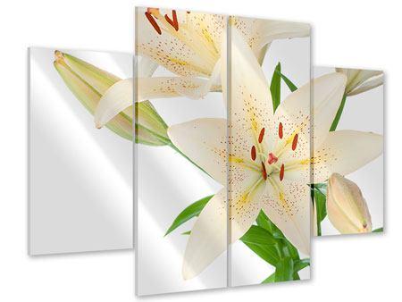 Acrylglasbild 4-teilig Weisser Lilienstrauch