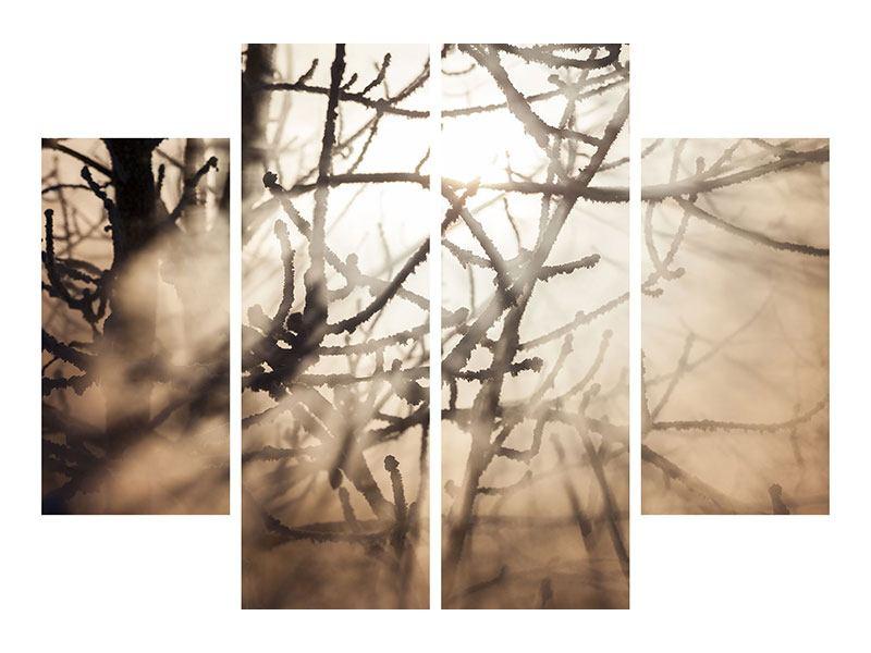Acrylglasbild 4-teilig Äste im Schleierlicht