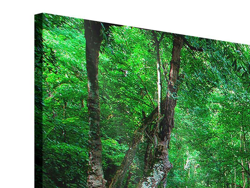 Acrylglasbild 4-teilig Am Fusse von Erawan
